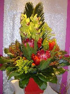 Cymbidium orchids, sago palm, protea, solidago, kangaroo, and lillies