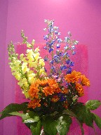 Delphinium, snapdragon, daisies, and waxflowers