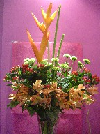 Heliconia, pompoms, alstroemeria, and coffee beans