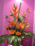 Heliconia, kangaroo, blue thistle, protea, gerbera, lillies, and monstera