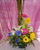Blue roses, daffodils, gerbera, solidago, genest, yellow daisies, and casablanca