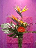 Bird of paradise, gerbera, pompoms, coffee beans, and monkey grass