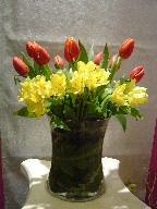 Tulips and alstroemeria