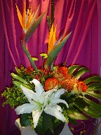 Bird of paradise, lillies, roses, solidago, protea, monstera, coffee beans, and pompoms