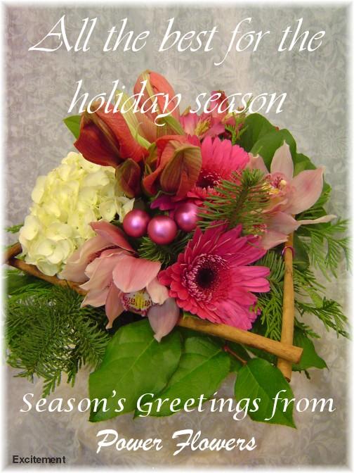 Toronto Florist   Toronto Flower Delivery   Toronto Flowers - Power on flower ball rentals, lighting rentals, flower table runner, flower chair covers,