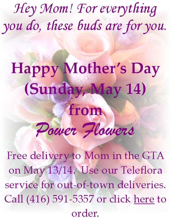 Mother's Day by Toronto Florist - Power Flowers