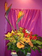Bird of paradise, gerbera, roses, cymbidium orchids, solidago, monstera, and monkey grass