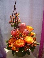 Circus roses, protea, alstroemeria, and coffee beans