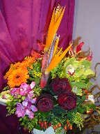 Bird of paradise, cymbidium orchids, roses, gerbera, coffee beans, solidago, and fresia