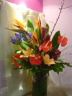Anthurium, bird of paradise, agapanthus, eucadendron, lillies, cymbidium orchid, pussy willow, and greens