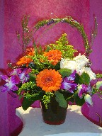 Gerbera, orchids, solidago, alstroemeria, roses, and casino blue