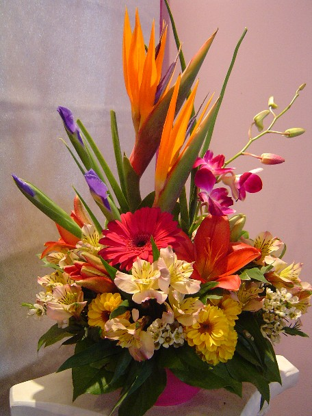Bird of paradise, iris, dendrobium orchids, gerbera, lilies, alstroemeria, daisies, and waxflowers