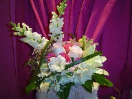 Snapdragon, roses, alstroemeria, waxflowers. lillies, and monkey grass