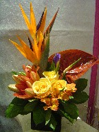 Bird of paradise, iris, anthurium, roses, lillies, and alstroemeria