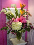 Calla lillies, bird of paradise, gerbera, hydreangea, peonis, and waxflowers