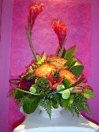 Circus roses, lillies, dahlia, ginger, pom poms, coffee beans, and monkey grass