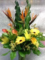 Bird of paradise, calla lillies, gerbera, alstroemeria, waxflowers, branch, and renaissance leaves