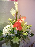 Calla lillies, anthurium, lillies, iris, hydreangea, alstroemeria, and genest
