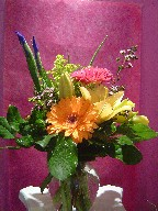 Gerbera, iris, solidago, lillies, and waxflowers