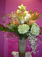 Genest, hydrangea, cymbidium orchids, philodendron, lillies, and roses