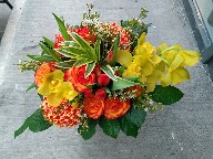 Cymbidium orchids, roses, tulips, tinted commercial mums, waxflowers, and Song of India